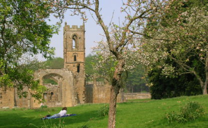 the ruins of Mount Grace Priory