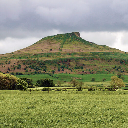 View of north side of Roseberry Topping, as seen from the en:Guisborough Branch Walkway.