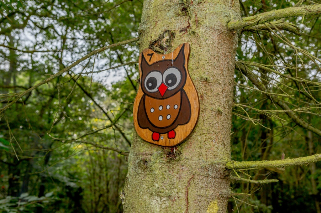 wooden owl pinned to tree marking the Cote Ghyll nature trail